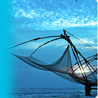 Chinese Fishing Net - Fish Cusine